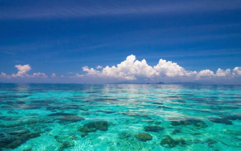 Photo provided by Maldives Islands coastline (Vibrant Image Studio/Shutterstock)