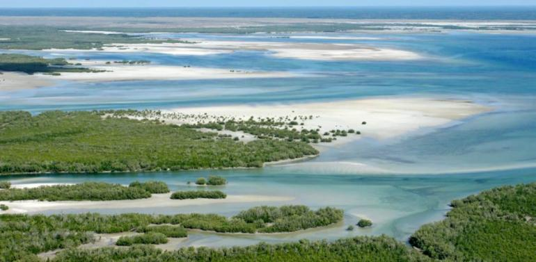 Photo provided by Coastline of Mozambique, Africa (EcoPrint/Shutterstock)